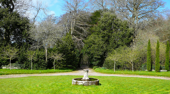 Cornish Gardens: Godolphin