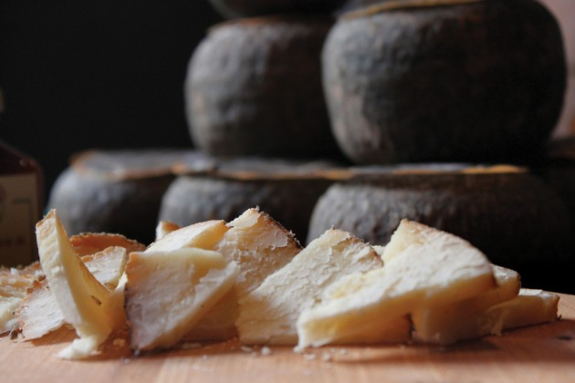 Three Of The Best Cornish Cheese Companies