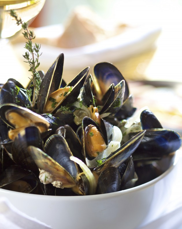 Ultimate Guide for Cornish Seafood!